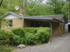 Ferienhaus Aabenraa, Haus-Nr: 14442