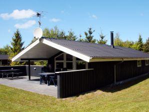 Ferienhaus Fjerritslev, Haus-Nr: 37327
