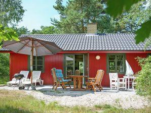 Ferienhaus Nexø, Haus-Nr: 42656