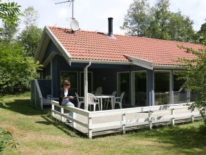 Ferienhaus Aakirkeby, Haus-Nr: 12362