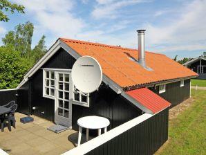 Ferienhaus Hovborg, Haus-Nr: 39502