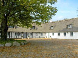 Ferienhaus ROSENHOLM