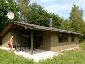 Ferienhaus Ørsted, Haus-Nr: 26892