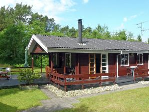 Ferienhaus Jerup, Haus-Nr: 42856
