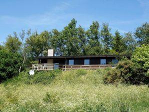 Ferienhaus Spøttrup, Haus-Nr: 13753