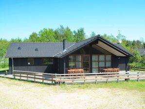 Ferienhaus Oksbøl, Haus-Nr: 42466