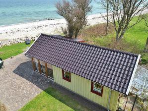 Ferienhaus Otterup Sogn, Haus-Nr: 40556