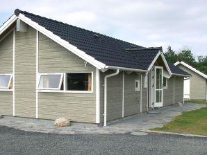 Ferienhaus Hemmet, Haus-Nr: 25737