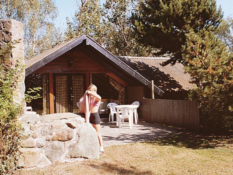 Ferienhaus Rødby, Haus-Nr: 42237