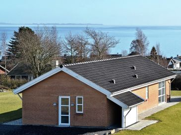 Ferienhaus Faaborg, Haus-Nr: 38367
