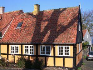 Ferienhaus Svaneke, Haus-Nr: 11510