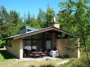 Ferienhaus Nexø, Haus-Nr: 31320