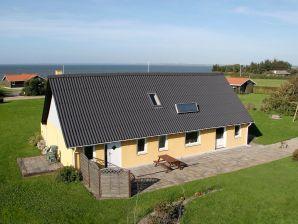 Ferienhaus Vinderup Kommune, Haus-Nr: 13220