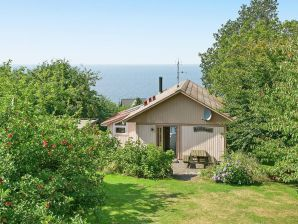 Ferienhaus Hasle Sogn, Haus-Nr: 31795
