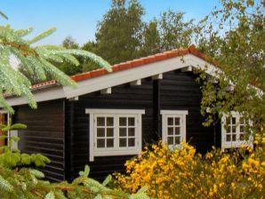 Ferienhaus Toftlund, Haus-Nr: 30754