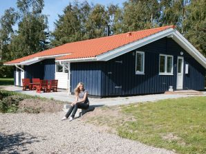 Ferienhaus Slagelse, Haus-Nr: 28623