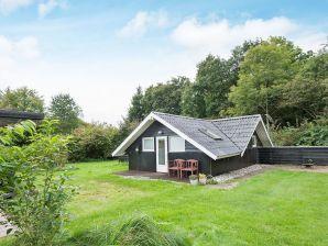 Ferienhaus Toftlund, Haus-Nr: 29009