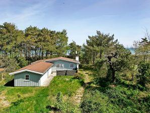 Ferienhaus Nexø, Haus-Nr: 39750