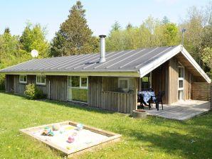 Ferienhaus Ansager, Haus-Nr: 42460