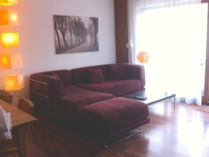 Holiday apartment in the City of SB (Near Train Station)