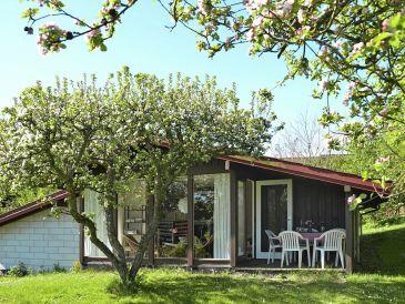 Ferienhaus Allinge, Haus-Nr: 31006