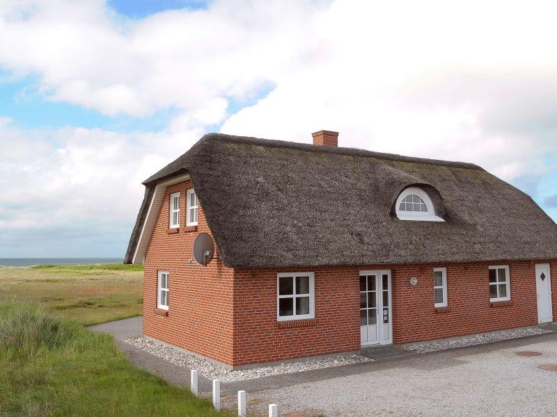 Ferienhaus Blåvand, Haus-Nr: 38461