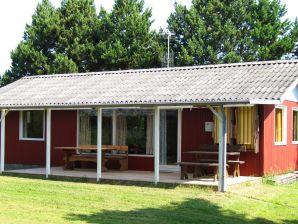 Ferienhaus Rødby, Haus-Nr: 42174