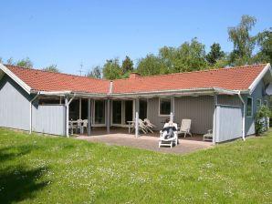 Ferienhaus Rødby, Haus-Nr: 42194