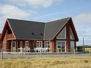 Ferienhaus Harboøre, Haus-Nr: 42488