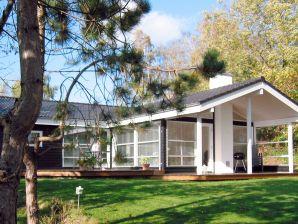 Ferienhaus Kirke Hyllinge, Haus-Nr: 26614