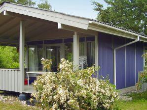 Ferienhaus Rødby, Haus-Nr: 38493