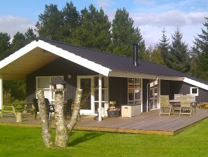 Ferienhaus Jerup, Haus-Nr: 75421