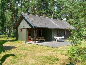 Ferienhaus Aakirkeby, Haus-Nr: 19026