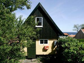 Ferienhaus Svaneke, Haus-Nr: 16041