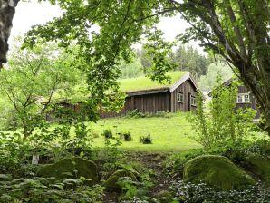 Ferienhaus Ljung / Ljung, Haus-Nr: 56779