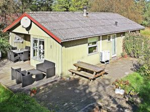 Ferienhaus Ringkøbing, Haus-Nr: 57709