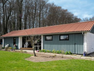 Ferienhaus Haderslev, Haus-Nr: 38065