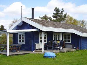 Ferienhaus Rødby, Haus-Nr: 38255