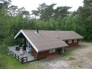 Ferienhaus Nexø, Haus-Nr: 12353