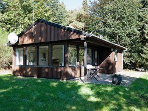 Ferienhaus Silkeborg, Haus-Nr: 76956
