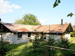 Ferienhaus Ulfborg, Haus-Nr: 67062