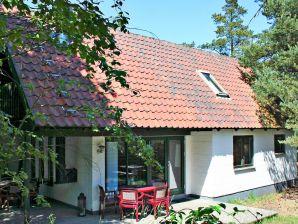 Ferienhaus Nexø, Haus-Nr: 10404