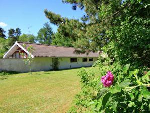 Ferienhaus Fårvang, Haus-Nr: 38228