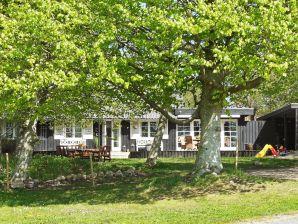 Ferienhaus Løgstør Kommune, Haus-Nr: 63173