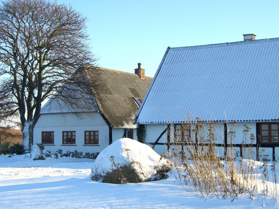 Winter auf Nydamsgaard