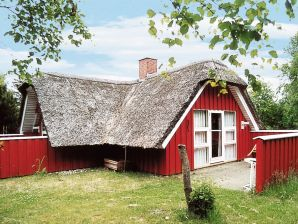 Ferienhaus Nørre Nebel, Haus-Nr: 80496