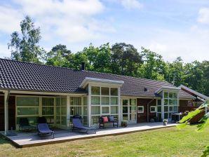 Ferienhaus Hasle Sogn, Haus-Nr: 42419