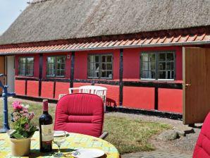 Ferienhaus Nexø, Haus-Nr: 09006