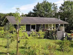 Ferienhaus Fårevejle, Haus-Nr: 57335