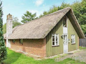 Ferienhaus Toftlund, Haus-Nr: 74442